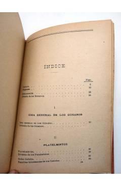 Muestra 1 de MANUALES SOLER XXV 25. GUSANOS PARÁSITOS DEL HOMBRE (M. Rivas Mateos) Manuel Soler 1900