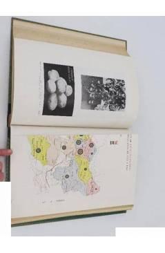 Muestra 2 de I CONGRESO NACIONAL DE INGENIERÍA AGRONÓMICA. TOMO II. EXPLOTACIÓN: CULTIVOS DE SECANO.. Madrid 1950