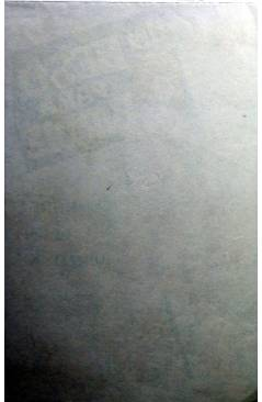 Contracubierta de PROGRAMA DE MANO. UN BESO PARA BIRDIE (George Sidney) 1964. ANN MARGRET JANET LEIGH DICK VAN DYKE