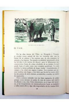 Muestra 4 de LOS ANIMALES Y SUS COSTUMBRES VOL 2. GRANDES ANIMALES (M. Mas Sala) Dalmau Carles Pla 1957