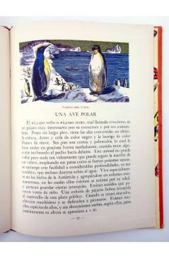 Muestra 2 de LOS ANIMALES Y SUS COSTUMBRES VOL 3. AVES (M. A De Gascons) Dalmau Carles Pla 1957