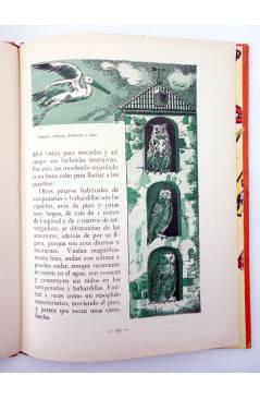Muestra 3 de LOS ANIMALES Y SUS COSTUMBRES VOL 3. AVES (M. A De Gascons) Dalmau Carles Pla 1957