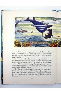 Muestra 3 de LOS ANIMALES Y SUS COSTUMBRES VOL 4. SERES DEL FONDO DEL MAR (M. A De Gascons) Dalmau Carles Pla 1957