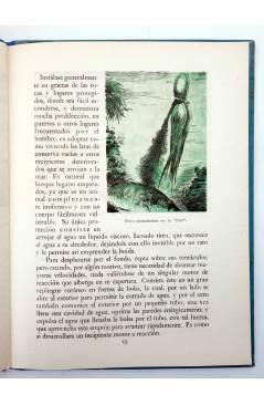 Muestra 4 de LOS ANIMALES Y SUS COSTUMBRES VOL 4. SERES DEL FONDO DEL MAR (M. A De Gascons) Dalmau Carles Pla 1957