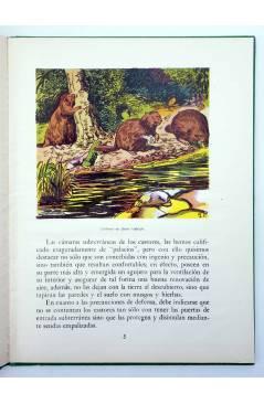 Muestra 1 de LOS ANIMALES Y SUS COSTUMBRES VOL 5. ANIMALES CURIOSOS (A. Lorenzana) Dalmau Carles Pla 1957
