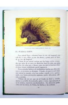Muestra 2 de LOS ANIMALES Y SUS COSTUMBRES VOL 5. ANIMALES CURIOSOS (A. Lorenzana) Dalmau Carles Pla 1957