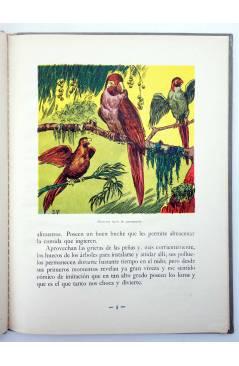 Muestra 1 de LOS ANIMALES Y SUS COSTUMBRES VOL 6. ANIMALES GRACIOSOS (F. Maragall) Dalmau Carles Pla 1957
