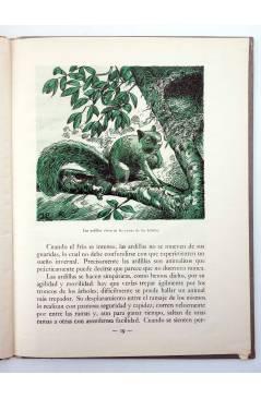 Muestra 4 de LOS ANIMALES Y SUS COSTUMBRES VOL 6. ANIMALES GRACIOSOS (F. Maragall) Dalmau Carles Pla 1957