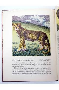 Cubierta de LOS ANIMALES Y SUS COSTUMBRES 1 A 6. COMPLETA (Vvaa) Dalmau Carles Pla 1957