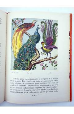 Muestra 2 de LOS ANIMALES Y SUS COSTUMBRES 1 A 6. COMPLETA (Vvaa) Dalmau Carles Pla 1957