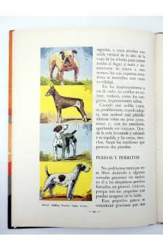 Muestra 5 de LOS ANIMALES Y SUS COSTUMBRES 1 A 6. COMPLETA (Vvaa) Dalmau Carles Pla 1957