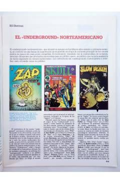 Muestra 1 de HISTORIA DE LOS COMICS FASCÍCULO 30. LA ERA UNDERGROUND (Vvaa) Toutain 1982