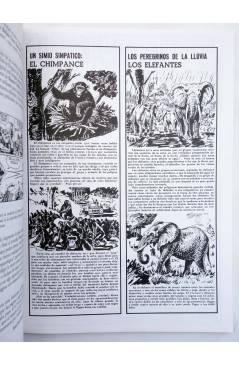 Muestra 2 de AMBRÓS: RELATOS CORTOS 5 (Ambrós) El Boletín 1995