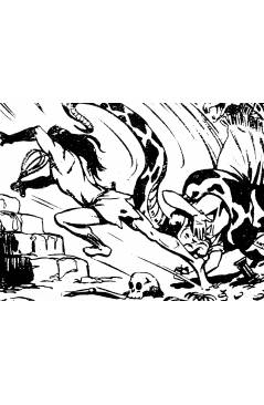 Muestra 6 de BENGALA 1 A 54. COMPLETA. MAGA 1959 (Quesada / Ortiz) Comic MAM Circa 1980. REEDICIÓN FACSIMIL