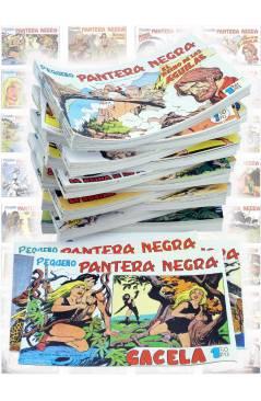 Cubierta de PANTERA NEGRA SEGUNDA 125 A 329. COMPLETA 205 NºS. MAGA (P. Y M. Quesada) Comic MAM Circa 1980. FACSIMIL