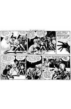 Contracubierta de PANTERA NEGRA SEGUNDA 125 A 329. COMPLETA 205 NºS. MAGA (P. Y M. Quesada) Comic MAM Circa 1980. FACSIM